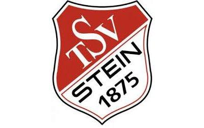 logotsvstein1875