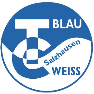 salzhausen-logo